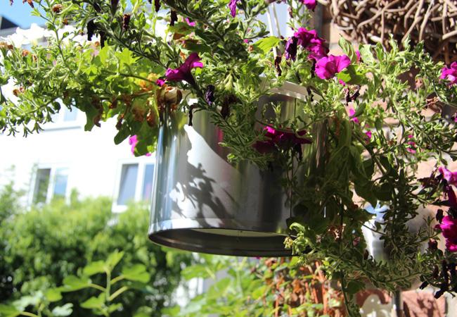 befestigung runder blumentopf balkon balkon blumenkasten world of flower pots runder edelstahl. Black Bedroom Furniture Sets. Home Design Ideas