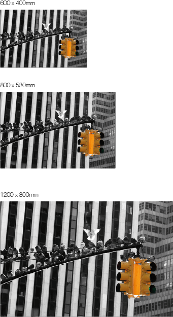 ampel-Bild auf Edelstahl